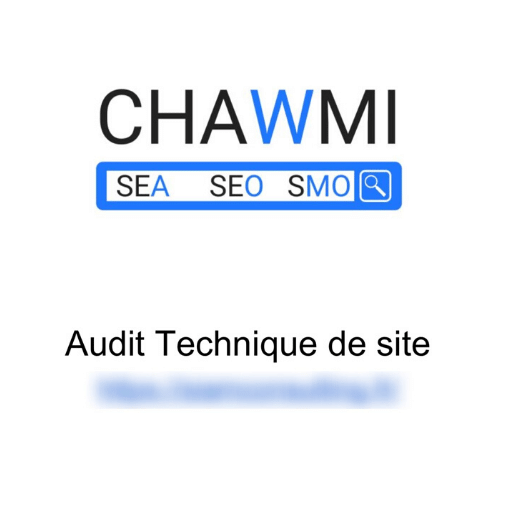 exemple audit technique seo
