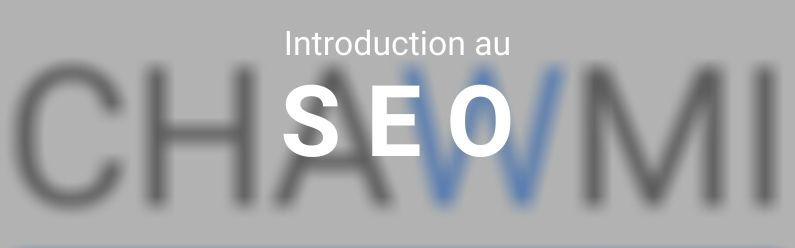 Introduction SEO