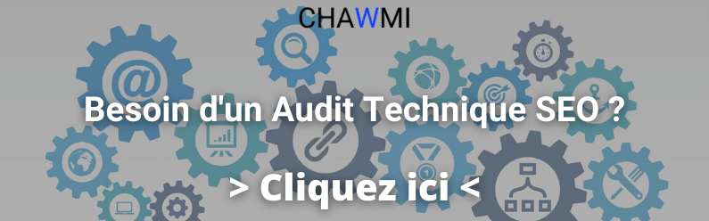 besoin d'un audit technique seo ?